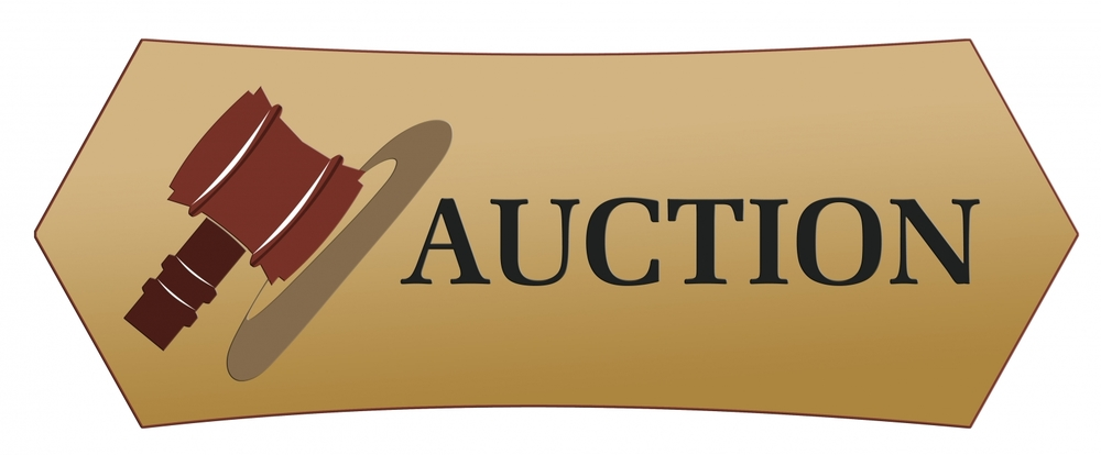 Huge Auction